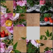 Puzzle №1131