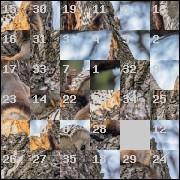 Puzzle №20811