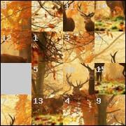 Puzzle №6783