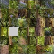 Puzzle №76011