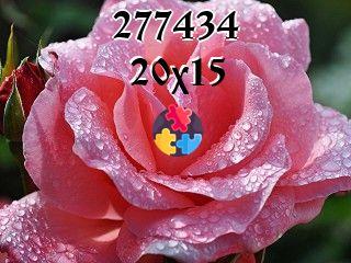 Rompecabezas flotantes №277434
