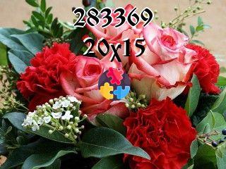 Puzzles flottants №283369