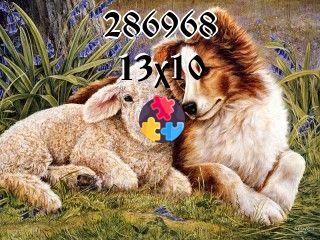Schwimmende Rätsel №286968