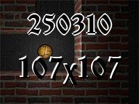 Maze №250310