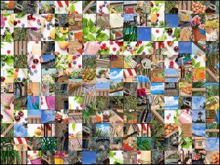 Multi-Puzzle №155263