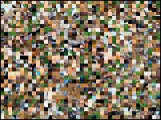 Multi-Puzzle №203650