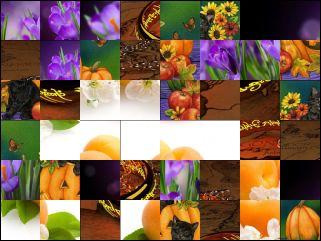 Multi Puzzle №24928