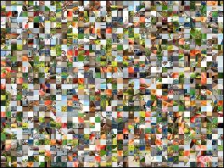 Multi-Puzzle №269893
