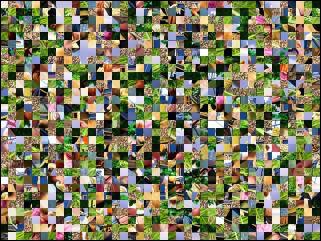 Multi-Puzzle №289326