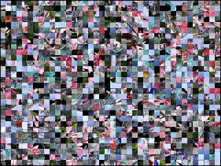 Multi-Puzzle №289517