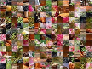 Multi Puzzle №30912