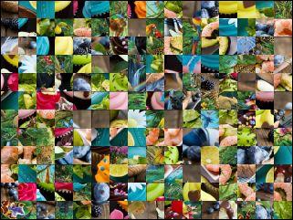 Multi Puzzle №31184