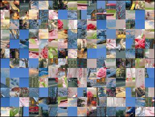 Multi Puzzle №48732