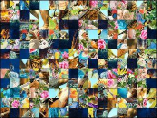 Multi Puzzle №81546