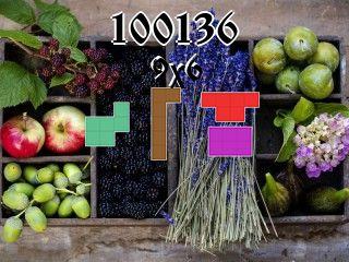 Puzzle polyominoes №100136