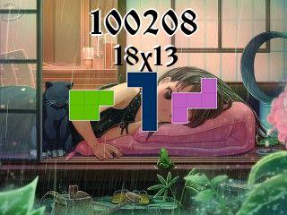 Puzzle polyominoes №100208