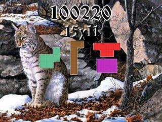 Puzzle polyominoes №100220