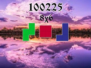 Puzzle polyominoes №100225