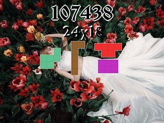 Puzzle polyominoes №107438