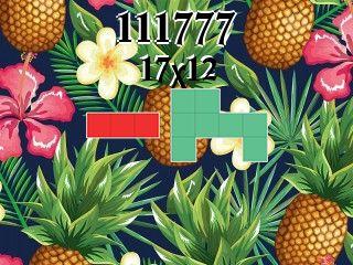 Puzzle polyominoes №111777