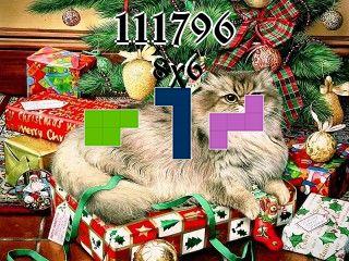 Puzzle polyominoes №111796
