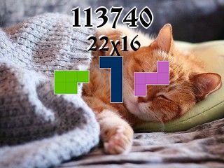 Puzzle polyominoes №113740