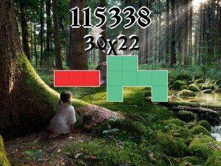 Puzzle polyominoes №115338