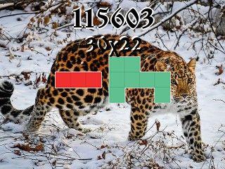 Puzzle polyominoes №115603