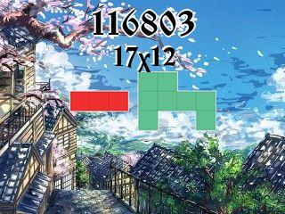 Puzzle polyominoes №116803