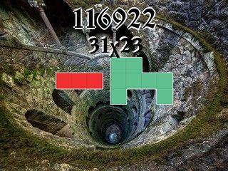 Puzzle polyominoes №116922