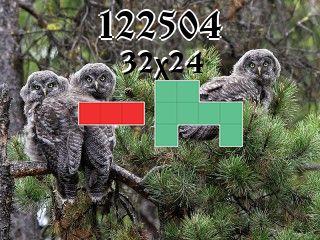 Puzzle polyominoes №122504