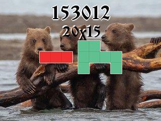 Puzzle polyominoes №153012