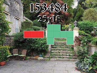 Puzzle polyominoes №153484