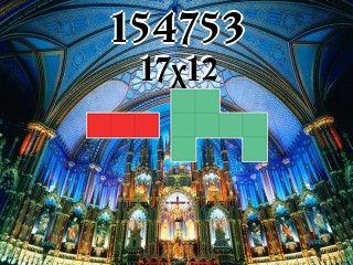 Puzzle polyominoes №154753