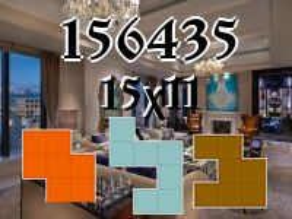 Puzzle polyominoes №156435