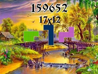 Puzzle polyominoes №159652