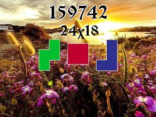 Puzzle polyominoes №159742