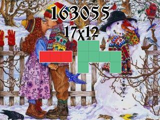 Puzzle polyominoes №163055