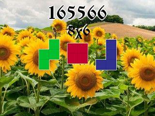 Puzzle polyominoes №165566