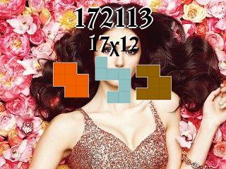 Puzzle polyominoes №172113