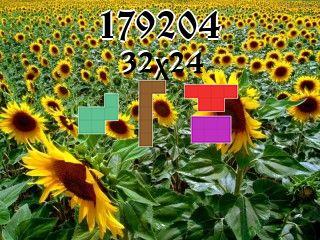 Puzzle polyominoes №179204