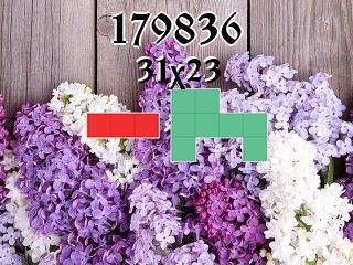 Puzzle polyominoes №179836