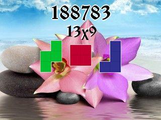 Puzzle polyominoes №188783