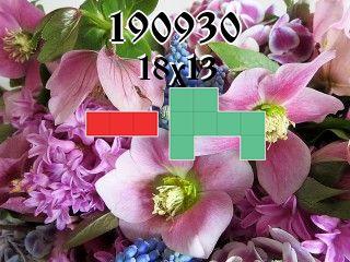 Puzzle polyominoes №190930