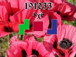 Puzzle polyominoes №191033