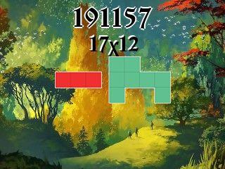 Puzzle polyominoes №191157