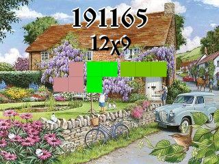 Puzzle polyominoes №191165
