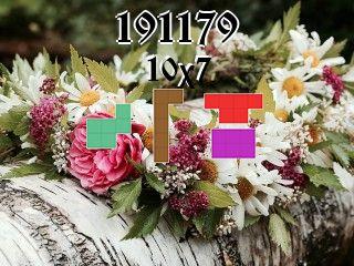 Puzzle polyominoes №191179