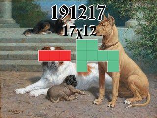 Puzzle polyominoes №191217