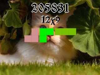 Puzzle polyominoes №205831
